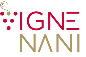 LogoVigneNani-OK-HR